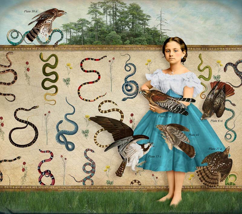 Girl's Guide to Snakes and Birds by Corinne Geertsen